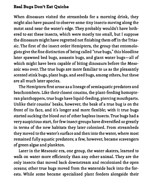 File:FF2 Planet of the bugs P126.PNG
